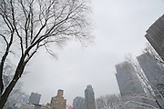 MANHATTAN, NY. FEB. 3, 2014. A post Super Bowl snowstorm blankets Central Park on Monday February 3rd, 2014. 02032014. Photo by Kayle Hope Schnell/NYCity Photo Wire.