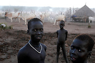 Young boys from the Mundari tribe guard cattle at a camp in Central Equatoria Province. The tribe suffered from inter-tribal conflicts and cattle rustling in the northern part of the province, so they moved further south looking for safer grazing land. The area where they settled is contaminated with unexploded ordinance and landmines. A Community Liaison Team from Mines Advisory Group (MAG) visited the tribe to survey the situation and to give mine risk education..Kuruki, South Sudan. 12/10/2009..Photo © J.B. Russell