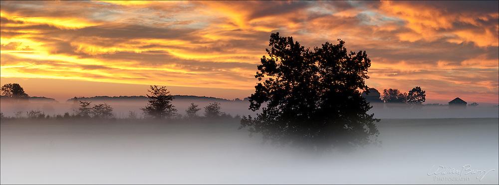 Confederate Avenue Sunrise