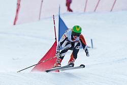 ROTHFUSS Andrea, GER, Team Event, 2013 IPC Alpine Skiing World Championships, La Molina, Spain