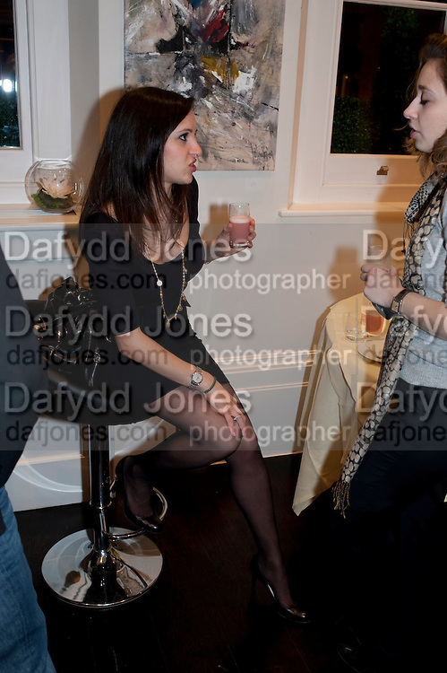 Donna Attar; Valerie Paisner, Gino Hollander exhibition, Also a chance to see  the flat at 105-106 Lancaster Gate which is for sale. London. 4 February 2010.