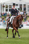 COOL MOUNTAIN ridden by William Fox-Pitt at Bramham International Horse Trials 2016 at Bramham Park, Bramham, United Kingdom on 10 June 2016. Photo by Mark P Doherty.