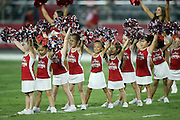 Arizona Cardinals junior cheerleaders do a dance routine before the 2015 NFL preseason football game against the San Diego Chargers on Saturday, Aug. 22, 2015 in Glendale, Ariz. The Chargers won the game 22-19. (©Paul Anthony Spinelli)
