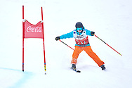 """Schladming, Austria - 2017 March 19: Myrthe Bechger from Netherlands (232) competes in Alpine Skiing Competition while Special Olympics World Winter Games Austria 2017 on the """"Sepp-Walcher-Downhill""""<br /> (Slope 32) near the """"Tauernalm"""" in Rohrmoos on March 19, 2017 in Schladming, Austria.<br /> <br /> Mandatory credit:<br /> Photo by © Adam Nurkiewicz / Mediasport<br /> <br /> Adam Nurkiewicz declares that he has no rights to the image of people at the photographs of his authorship.<br /> <br /> Picture also available in RAW (NEF) or TIFF format on special request.<br /> <br /> Any editorial, commercial or promotional use requires written permission from the author of image.<br /> <br /> Image can be used in the press when the method of use and the signature does not hurt people on the picture."""
