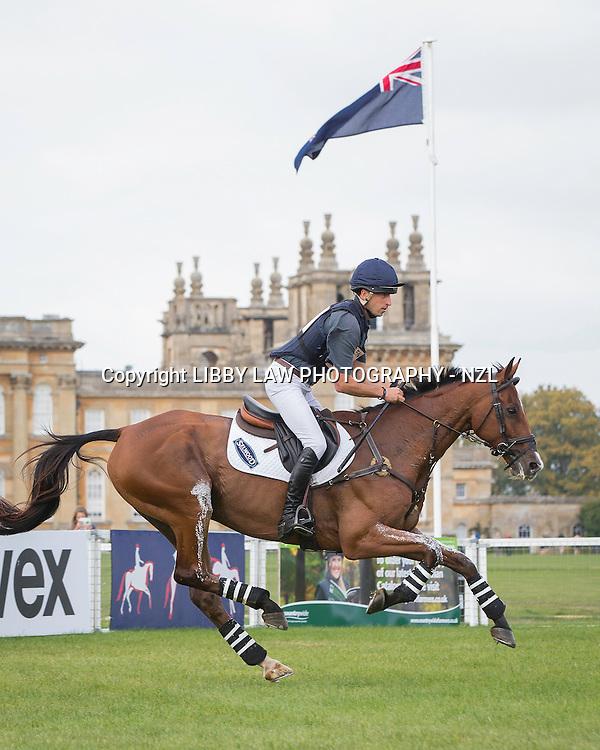 NZL-Tim Price (RINGWOOD SKY BOY) INTERIM-3RD: CCI3* CROSS COUNTRY: 2014 GBR-Blenheim Palace International Horse Trial (Saturday 13 September) CREDIT: Libby Law COPYRIGHT: LIBBY LAW PHOTOGRAPHY - NZL