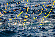 Tori-lines at the back of a commercial purse-sein trawler to scare off pelagic seabirds, Cape Canyon Trawl Grounds, South Africa