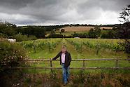 GBR: English Wine