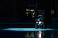 KELOWNA, CANADA - OCTOBER 5: Rocky Raccoon, the mascot of the Kelowna Rockets enters the ice against the Victoria Royals on October 5, 2018 at Prospera Place in Kelowna, British Columbia, Canada.  (Photo by Marissa Baecker/Shoot the Breeze)  *** Local Caption ***