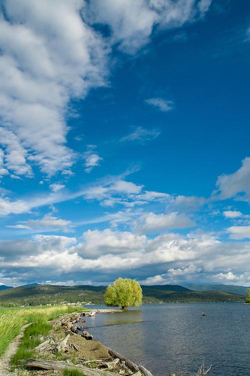 North shore of Flathead Lake