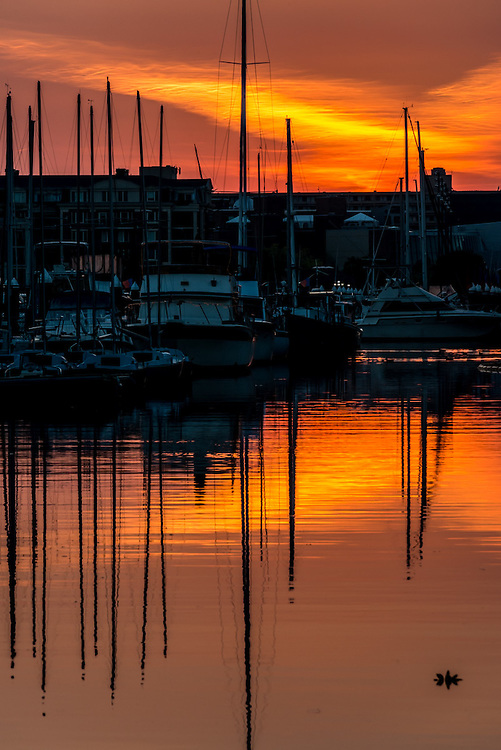 Reflections at sunset at Harbor East, Baltimore
