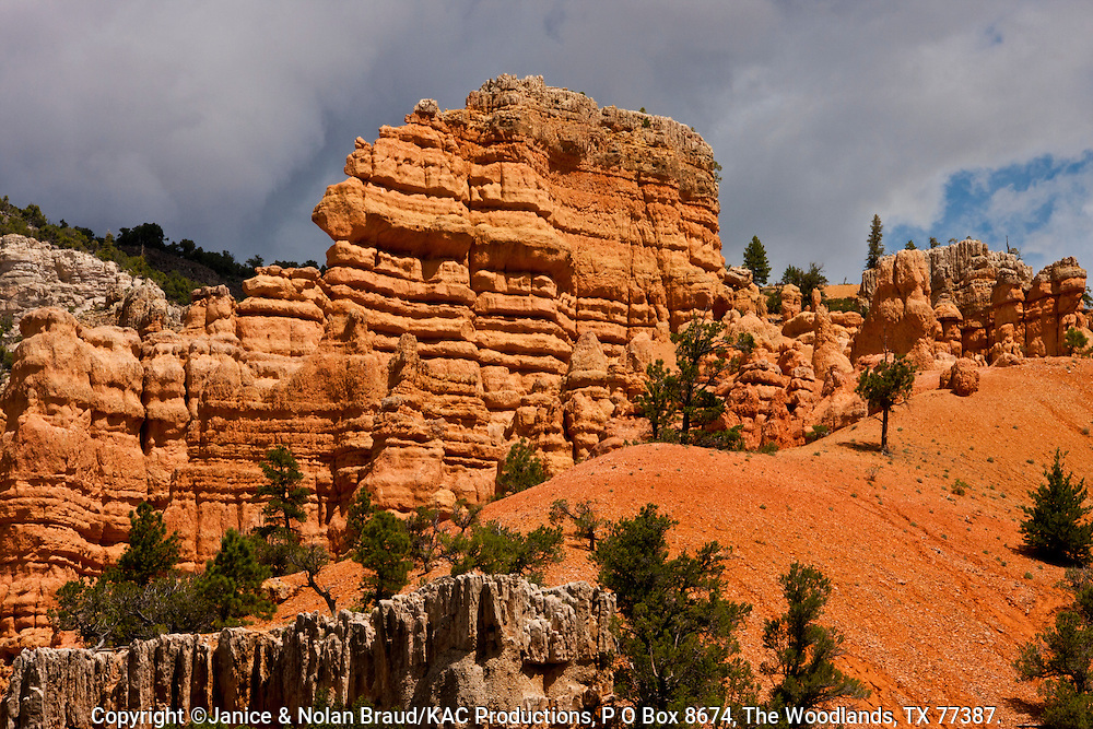 Red Rock Canyon on scenic highway 12 in Dixie National Forest in Utah. This canyon is just a few miles from the entrance to Bryce Canyon National Park, and so is often ignored or bypassed on the way to the better known tourist attraction. However, this canyon displays some of the reddest rock anywhere in Utah, with amazing formations though on a smaller scale. As part of a national forest, it is and interesting and photogenice place to hike and enjoy Utah's wonders.