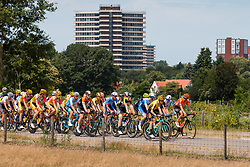 Peloton near Wageningen during 2019 Dutch National Road Race Championships Men Elite, Ede, The Netherlands, 30 June 2019, Photo by Pim Nijland / PelotonPhotos.com | All photos usage must carry mandatory copyright credit (Peloton Photos | Pim Nijland)