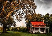 Carolina Landscapes