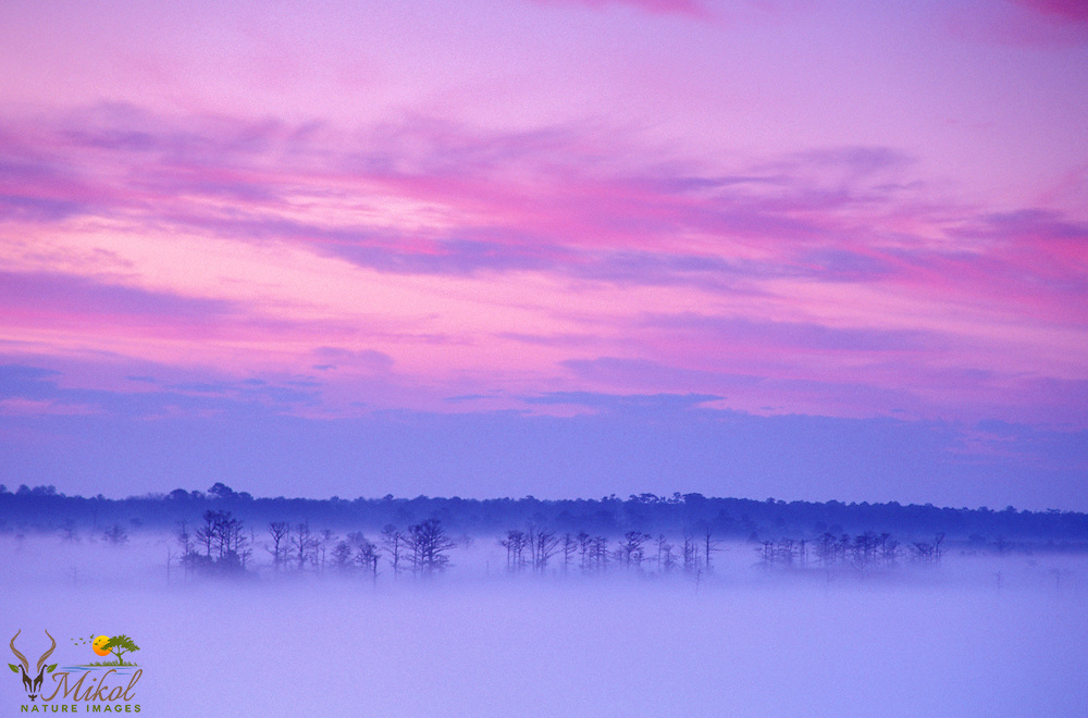 Foggy Sunrise over Winyah Bay