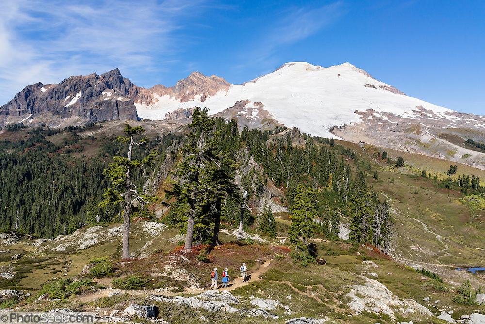 Admire close views of Mount Baker (elevation 10,781 feet) from Park Butte Trail in Mount Baker Wilderness, Mount Baker-Snoqualmie National Forest, Washington, USA.