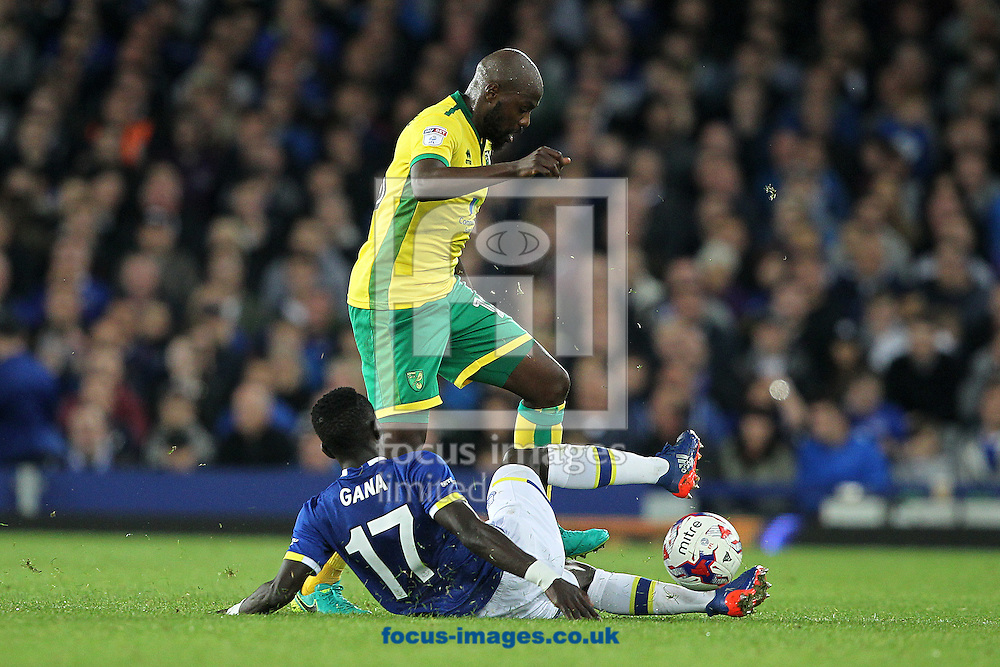 Idrissa Gueye of Everton and Youssouf Mulumbu of Norwich in action during the EFL Cup match at Goodison Park, Liverpool<br /> Picture by Paul Chesterton/Focus Images Ltd +44 7904 640267<br /> 20/09/2016