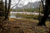 Winter in Yosemite Valley