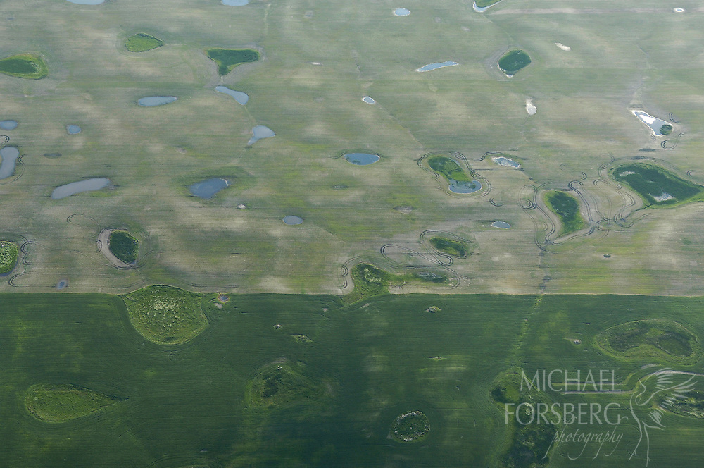 Prairie pothole region - Missouri coteau..(Aerial) A county road divides plowed grassland for agricultural production around pothole wetlands...Kidder or Stutsman counties..(Ethanol - Biofuels)