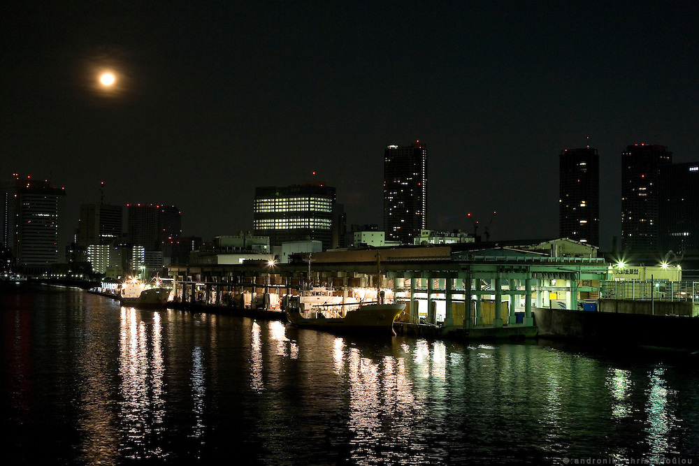 Night view of the Tsukiji fish market as seen at 1 am from the Katsidoki bridge on Sumida river.  Tsukiji fish market  is the biggest wholesale fish and seafood market in the world and also one of the largest wholesale food markets of any kind. The market is located in Tsukiji in central Tokyo, and is a major attraction for foreign visitors.