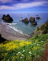Pacific Ocean view from Samuel H. Boardman State Scenic Corridor Oregon USA