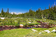 Unicorn Creek above Tuolumne Meadows, Yosemite National Park, California USA
