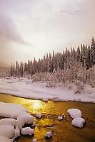 Beaver River, Glacier National Park, BC
