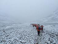 Maiviken hike to Grytviken, South Georgia