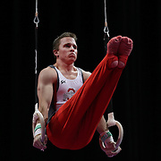 Daniel Steiner, Columbus, Ohio, in action on the Still Rings during the Senior Men Competition at The 2013 P&G Gymnastics Championships, USA Gymnastics' National Championships at the XL, Centre, Hartford, Connecticut, USA. 16th August 2013. Photo Tim Clayton