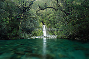 An enchanted waterfall flows into an emerald river, deep in the forests of Fiordland National Park.
