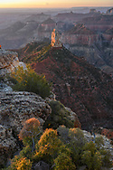 North America; American; USA; Desert Southwest; Colorado Plateau; Arizona; Grand Canyon National Park; North rim; Mount Hayden,