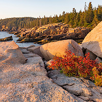 Cliffs of Thunder Hole and Otter Point in beautiful sunrise light. Acadia National Park, near Bar Harbor, Maine.