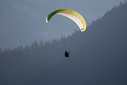 Paraglider Paragliding with blue sky background. Photographed in Neustift, Stubaital, Tyrol, Austria,