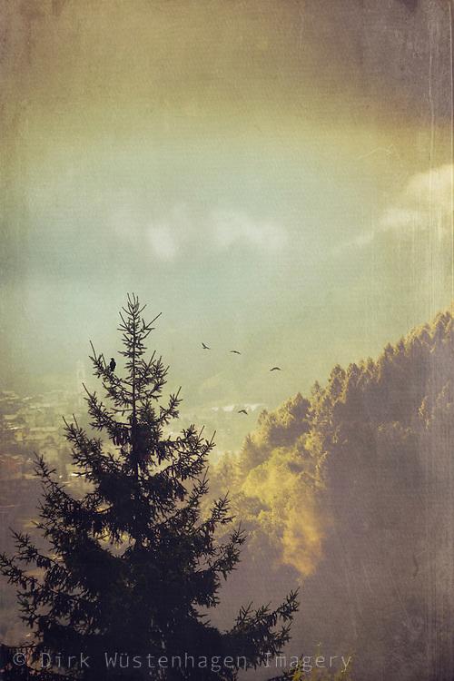 Alpenlandschaft im Morgenlicht, Caspoggio in Valmalenco, Lombardei, Italien; texturierte Fotografie