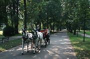 Deutschland, Germany,Baden-Wuerttemberg.Schwarzwald.Baden-Baden, Kurpark, Pferdekutsche in der Lichtentaler Allee.Black Forest, Baden-Baden, park, horse carriage in avenue...