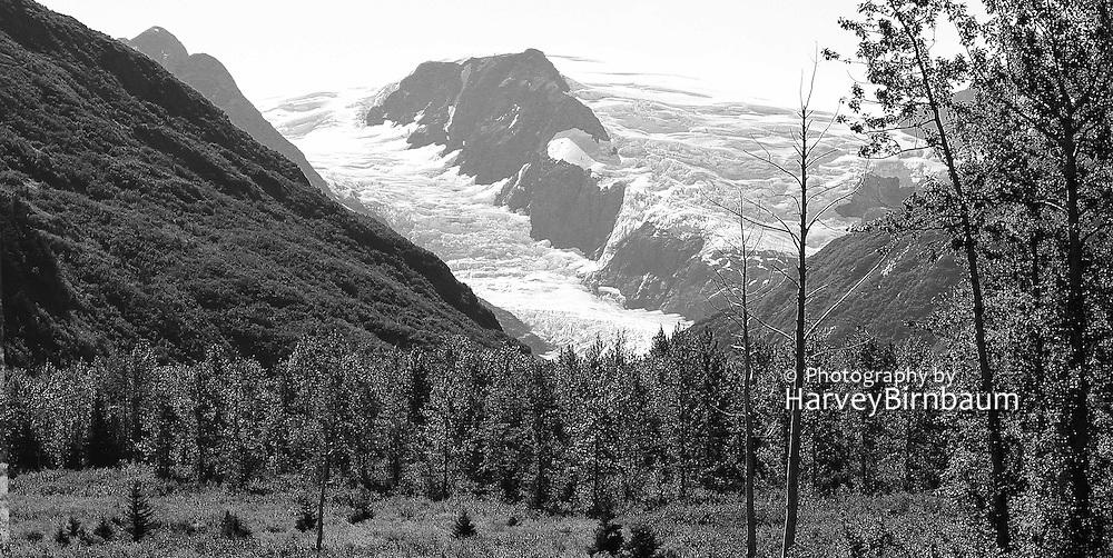 Alaska landscape - Scenic