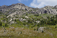 Wildlife watching location Veliki Loma, North Velebit National Park,  Velebit Nature Park, Rewilding Europe rewilding area, Velebit  mountains, Croatia