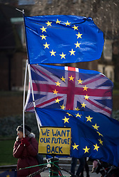 © Licensed to London News Pictures. 31/01/2018. London, UK. Protesters fly the EU flag alongside the Union Flag outside the House of Parliament in London in protest at Brexit and the UK's decision to leave the EU.Photo credit: Ben Cawthra/LNP