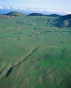 Kahua Ranch, Kohala, Island of Hawaii, Hawaii, USA<br />