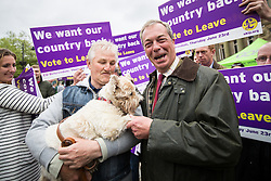 © Licensed to London News Pictures . 25/05/2016 . Bolton , UK . NIGEL FARAGE shakes the paw of a supporter's dog . The UKIP referendum bus tour , campaigning for a UK Brexit , lead by Nigel Farage , in Victoria Square , Bolton . Photo credit : Joel Goodman/LNP