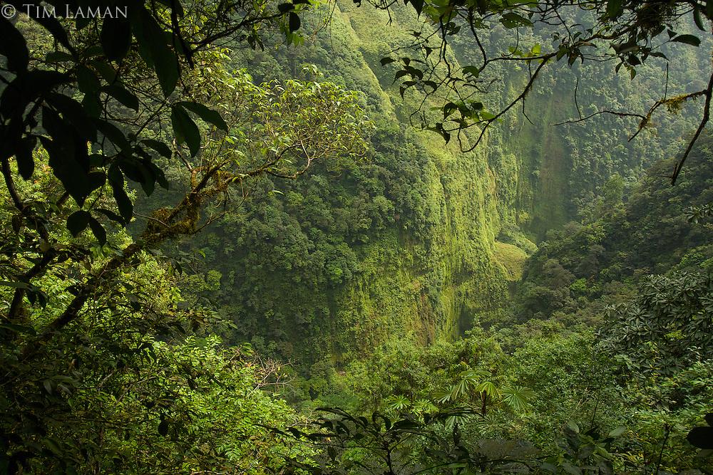 Gorge of the Rio Ole, draining the Caldera.