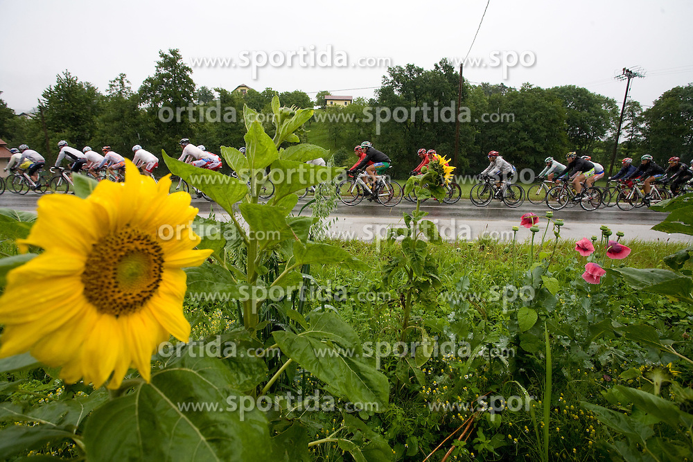 Peloton in Slovenske Konjice at 3rd stage of Tour de Slovenie 2009 from Lenart to Krvavec, 175 km, on June 20 2009, Slovenia. (Photo by Vid Ponikvar / Sportida)