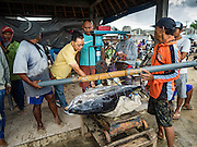 18 JULY 2016 - KUTA, BALI, INDONESIA: A buyer (in yellow shirt) checks the quality of a yellowfin tuna at Pasar Ikan pantai Kedonganan, a fishing pier and market in Kuta, Bali. The fish were caught by trawlers working in Indonesian waters and transferred to smaller boats which then brought the yellowfin into shore. Yellowfin are extremely popular with Japanese consumers for sushi and sashimi and the best yellowfin caught in Indonesian waters are sent directly to Japan.    PHOTO BY JACK KURTZ