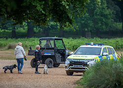 © Licensed to London News Pictures. 10/06/2020. London, UK. Police patrol Pen Ponds in Richmond Park after a newborn cygnet received life threatening injuries when a runner kicked it out of his way. The young swan which is on death's door is being cared for by a swan specialist centre. Photo credit: Alex Lentati/LNP