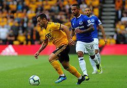 Ruben Vinagre of Wolverhampton Wanderers under pressure from Theo Walcott of Everton - Mandatory by-line: Nizaam Jones/JMP - 11/08/2018/ - FOOTBALL -Molineux  - Wolverhampton, England - Wolverhampton Wanderers v Everton - Premier League