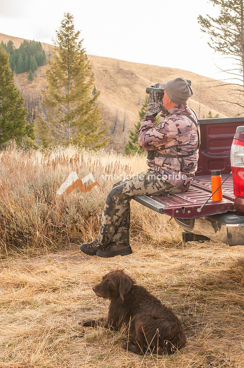 Hunter scoping from tailgate with dog below.Fairfield, Idaho.