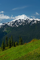 Mount Baker (elevation 10,778 feet (3,285 m). Seen from Goat Mountain, Mount Baker Wilderness Washington