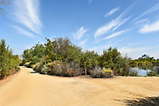 San Joaquin Marsh Trail Intersection