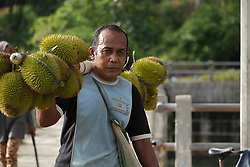 July 29, 2017 - Aceh Besar, Aceh, Indonesia - A resident brought freshly harvested durian from the garden in Aceh Besar District, Aceh Province. For local residents, seasonal harvest durian can boost the economy of the community. (Credit Image: © Abdul Hadi Firsawan/Pacific Press via ZUMA Wire)