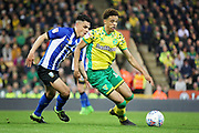 Norwich City defender Jamal Lewis (12)  and Sheffield Wednesday midfielder Joey Pelupessy (8) during the EFL Sky Bet Championship match between Norwich City and Sheffield Wednesday at Carrow Road, Norwich, England on 19 April 2019.
