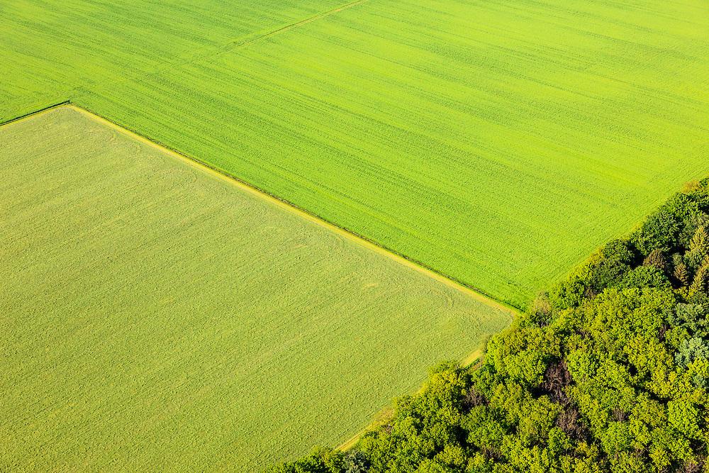 Nederland, Noord-Brabant, Gemeente Gemert-Bakel, 27-05-2013; Oorspronkelijk uitgestrekt heidegebied in de Peel, ontgonnen door Heidemij tot bos en landbouwgrond. Ten westen van Rips<br /> The Peel, originally vast moorland in, reclaimed by Heijdemij to woodland and farmland.<br /> luchtfoto (toeslag op standard tarieven)<br /> aerial photo (additional fee required)<br /> copyright foto/photo Siebe Swart